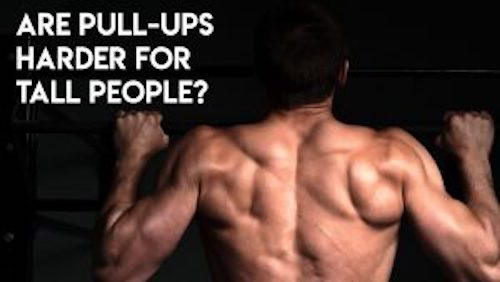 Are Pull-Ups Harder for Tall People? - Larson Sports and