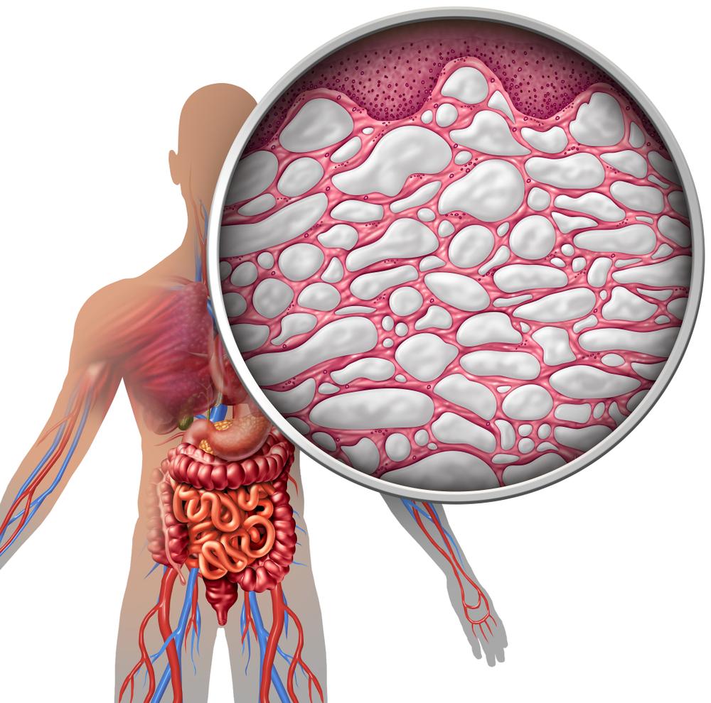human fascia, interstitium, myofascial bands, fascial release